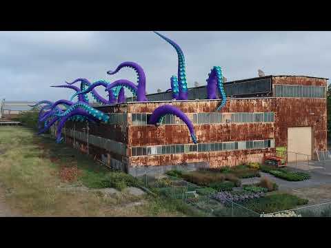 A Warehouse Housing a Giant Purple Sea Monster