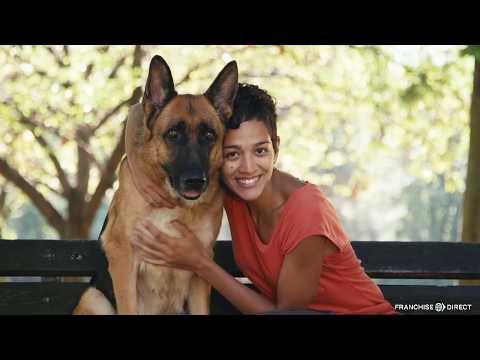 , title : 'Dog Training Elite Franchise Owner Mashup