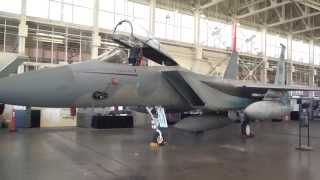 preview picture of video 'McDonnell Douglas F-15C Eagle (Fighter)'
