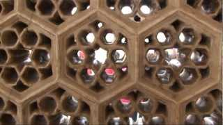preview picture of video 'INDIEN 25 Rotes Fort in Agra.flv'
