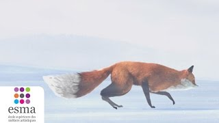 The Short Story of a Fox and a Mouse - ESMA 2015
