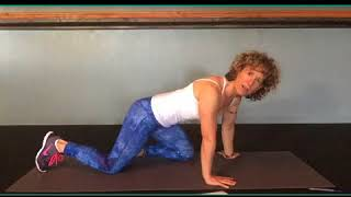 Why the Hinge Forward in Hi Chaturanga is Bad for You?