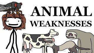 Animal Weaknesses