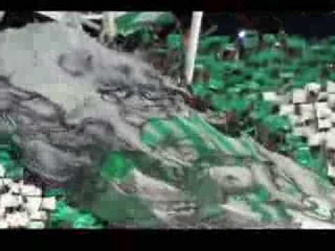 """Salida Deportivo Cali final 2013 Tifo Frente Radical Verde"" Barra: Frente Radical Verdiblanco • Club: Deportivo Cali"