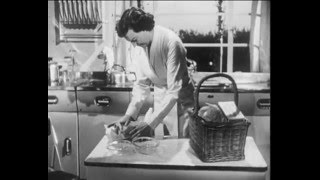 The Good Housewife In Her Kitchen (1949)