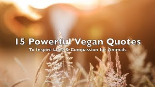 Powerful Vegan Quotes To Inspire Love & Compassion For Animals || Pictures, Speech, Music