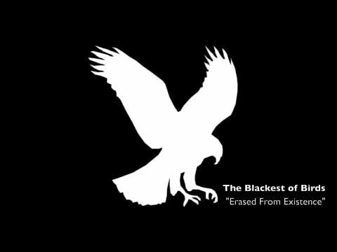 The Blackest of Birds - Erased From Existance