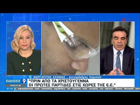 Σχοινάς στην ΕΡΤ: Δεν τελειώσαμε επειδή έρχεται το εμβόλιο  | 17/12/2020 | ΕΡΤ