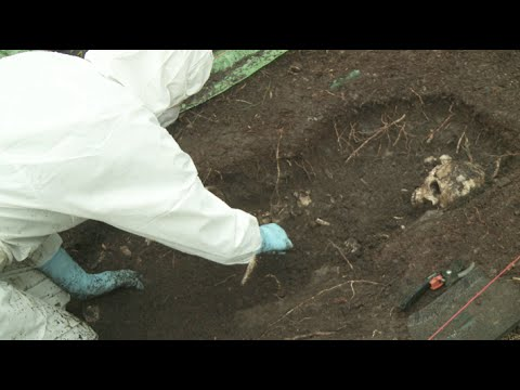 How are forensic remains exposed & recovered? - YouTube