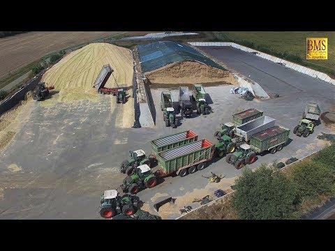 XXL Maisernte 3 - Maisprofis häckseln u. silieren Energiemais für Biogas plant biggest corn harvest