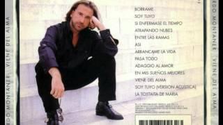 Viene del Alma Ricardo Montaner 1995 (Audio)