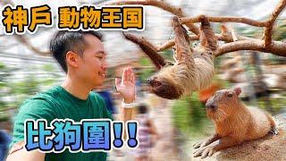 比狗圍🐶咸濕所有動物🧸神戶動物王國 Kobe Animal Kingdom