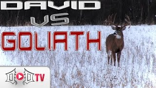 DAVID VS GOLIATH: Largest Wild Buck EVER Caught On Camera