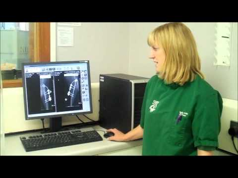 Video Advantages for vet practices of moving from chemical to digital X-ray video