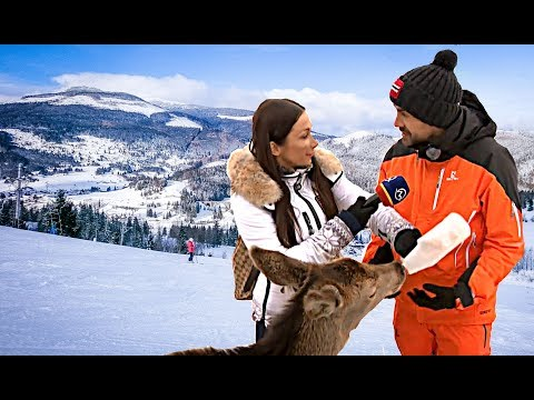 Lyžovanie v Ski Telgárt