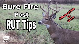 How To Hunt AFTER The Rut