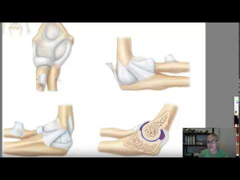 Dolor de la espalda y el costado derecho de la pelvis