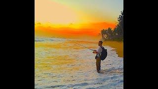 Рыбалка в океане на шри ланке