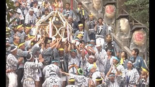 平成30年愛宕神社出世の石段祭本社神輿宮出し