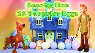 The Scooby Doo Spooky Surprise Eggs Opened by The Assistant