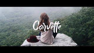 Lizot   Corvette (Vion Konger Remix)(Lyric)