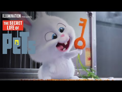 Movie Trailer: The Secret Life of Pets (1)