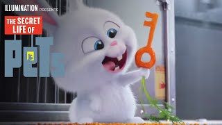 Download Video The Secret Life Of Pets - Kevin Hart Is Snowball (HD) - Illumination
