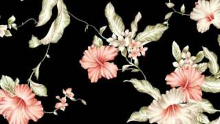 Bel Canto~Waking Will