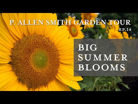 Best Plants for Blooms all Summer | Garden Tour: P. Allen Smith (2019)