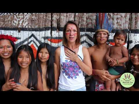 Aldeia Indígena no Amazonas    Vale a Pena Conhecer   Floresta Zen