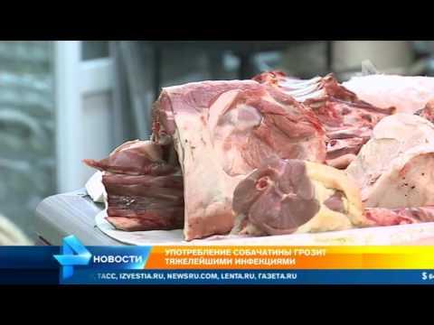 Россиян травят собачьим мясом