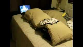 "Interesting set up method for ""Guys"" on how to hump a bulging pillow!"