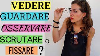 Vedere vs Guardare vs Osservare vs Scrutare vs Fissare - Learn how to use Italian verbs