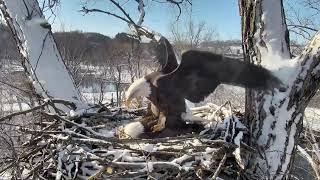 Decorah Eagles 1-1-19, 10:20 am Mom demo, long UME2 submissive posture