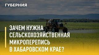 Зачем нужна сельскохозяйственная микроперепись в Хабаровском крае? Утро с Губернией 04/08/2021