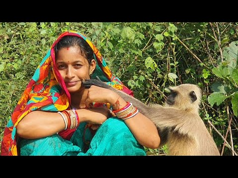 Side effects of love  Never forget to watch this give and get relationship between human and animals
