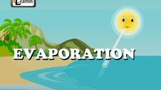 Evaporation - Elementary Science
