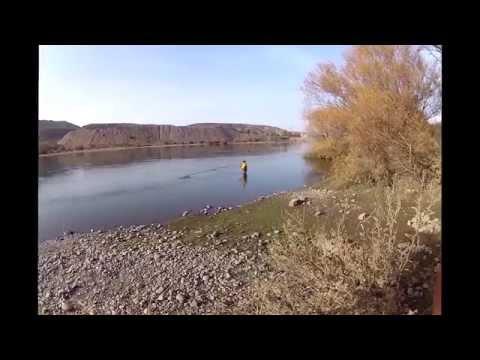 Pesca en el Limay