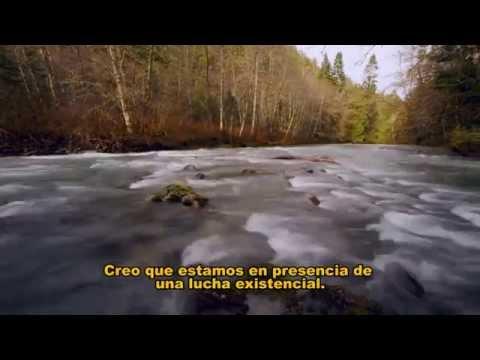 El Retorno del Río