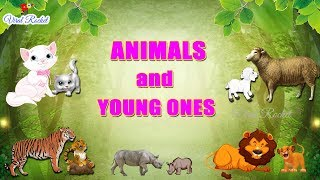 Animals and their Young Ones for kids | Young Ones of Animals and birds | Animals and their Babies