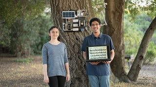 Can two high school students use machine learning to predict wildfires?