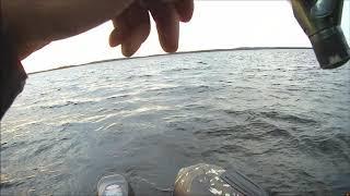 Рыбалка на сегозере в июле