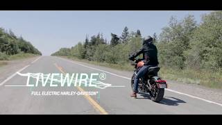 Privateers Harley-Davidson - The 2020 LiveWire®