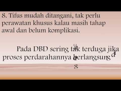 Video Beda Gejala Penyakit Tifus dan DBD