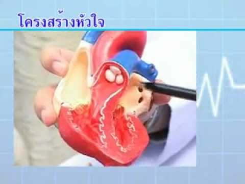 ผิว neurodermatitis