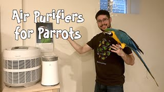 Air Purifiers and Parrots