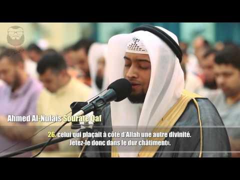 Surah Rahman - Mishary Rashid Al Afasy | Zroor