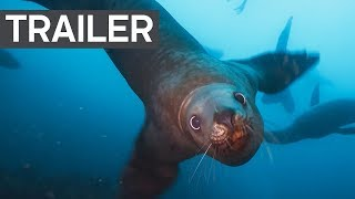Blue Planet II Official Trailer 2 | BBC Earth