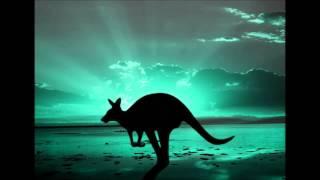 Stop den lille kænguru techno remix