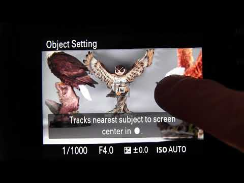 Touch Screen Features of Sony RX10 IV | White Knight Press